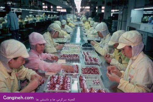 chinese_toys_factory_14